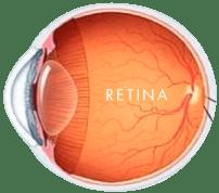 dr-beatriz-endo-retinaimagen